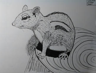 Inktober 2020, Day 6: Rodent