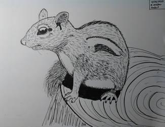 Inktober 2020, Day 6: Rodent