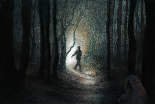 These woods are lovely, dark and deep...