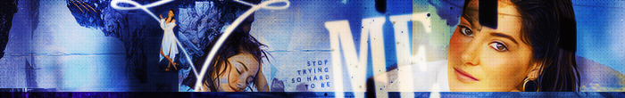 Me, Myself, And I Banner by herrondale