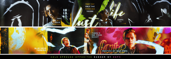 Cole Sprouse Opposites Banner by herrondale