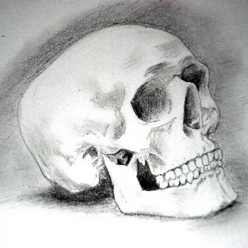 to be or not to be a skull by felixstorm on DeviantArt