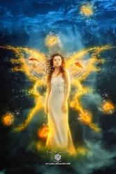 fairy of goldfish