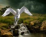 Pegasus Sefarina