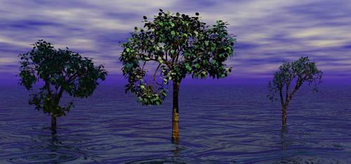 Three Trees in the Sea