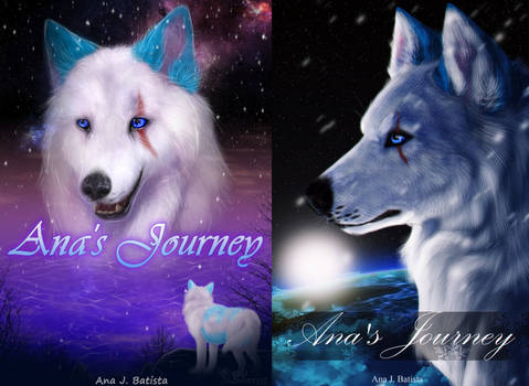 Ana's Journey Newest Book Covers