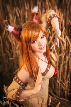 Horo (Holo) from Spice and Wolf cosplay