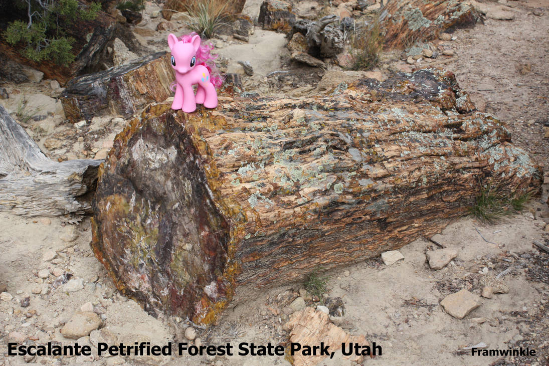 Pinkie Pie visits Escalante Petrified Forest by Framwinkle
