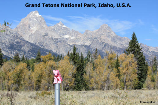 Grand Tetons Pinkie