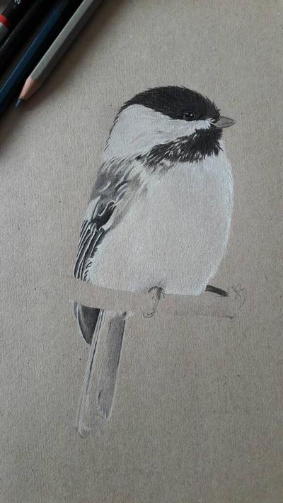 Little Chickadee - Part 3 by Inge-Mertens
