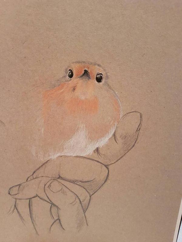 Sassy red robin - part 1 by Inge-Mertens