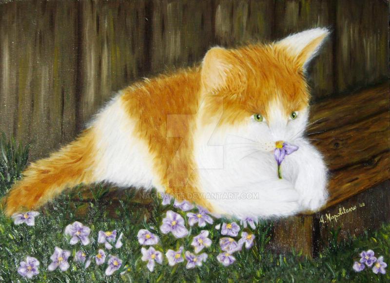 Il fiore e il gatto by nagisarte