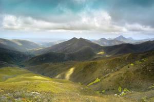 Fynbos Meadows I by suffer1