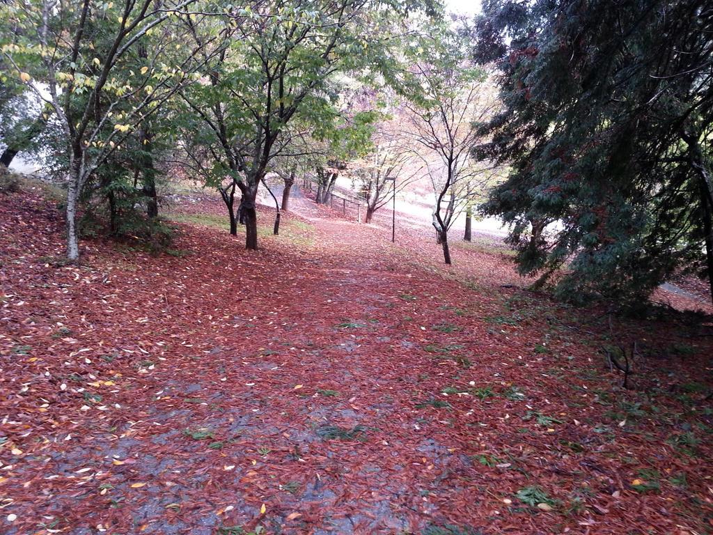 Buried Path