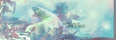 Polar___Pwnage___Bear_by_shk828.png