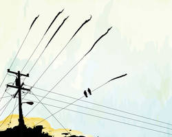 power pole with crows