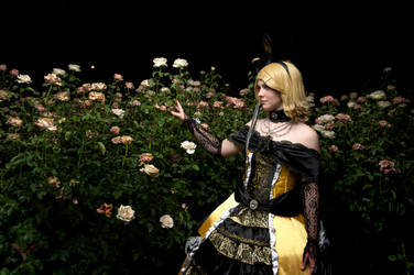 Daughter of Evil: Thorn in the Garden by ValdaValsha