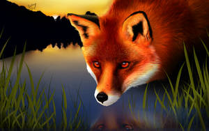 Red Fox by FlyingPings