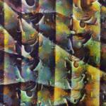 200131c3 DAP JoaquinHD(JoaquinHD Rainbow)