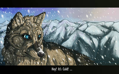 Hey! Its cold...