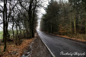 Lonely Road to... by xMAXIx