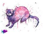 Galaxy Ferret