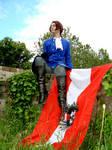 APH Austria I