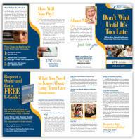 Insurance Brochure by tlsivart