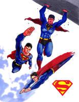 Superman Sketches by tlsivart
