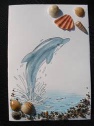 Birthday Dolfin