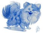 Puffy Pomeranian
