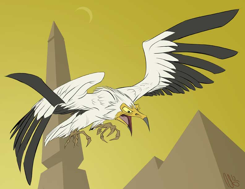 egyptian vulture drawing - photo #4