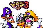 Wario land brothers 3