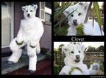 Clover full suit