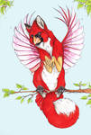 Cardinal Fox