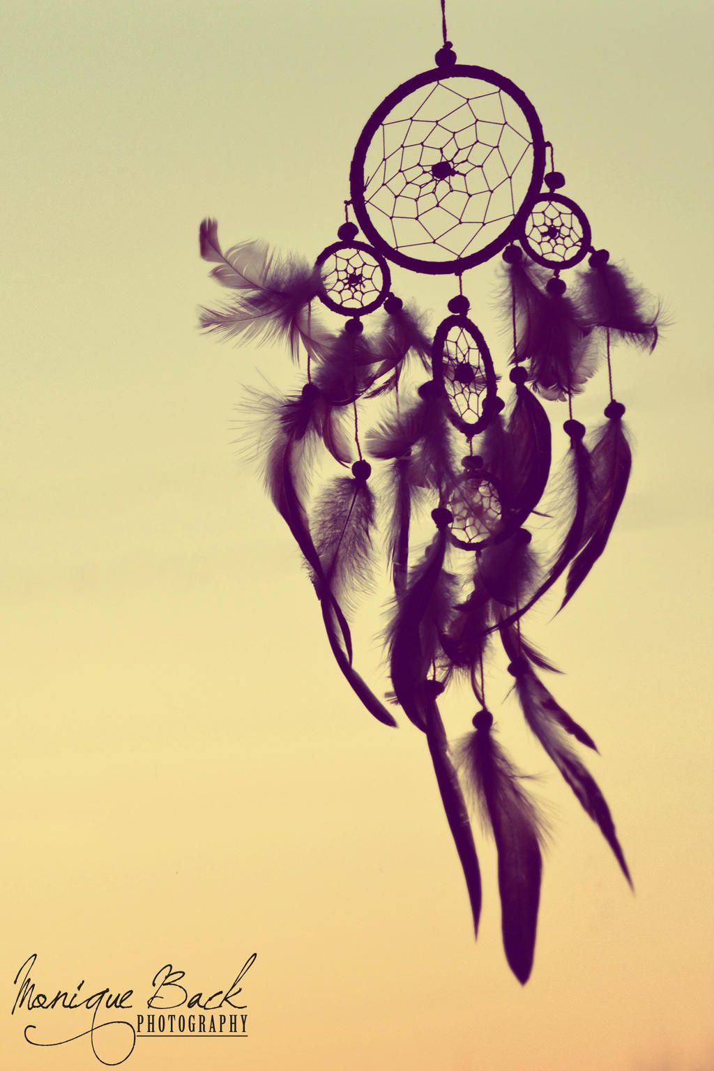 dreamcatcher tattoo design group picture image by tag Quotes