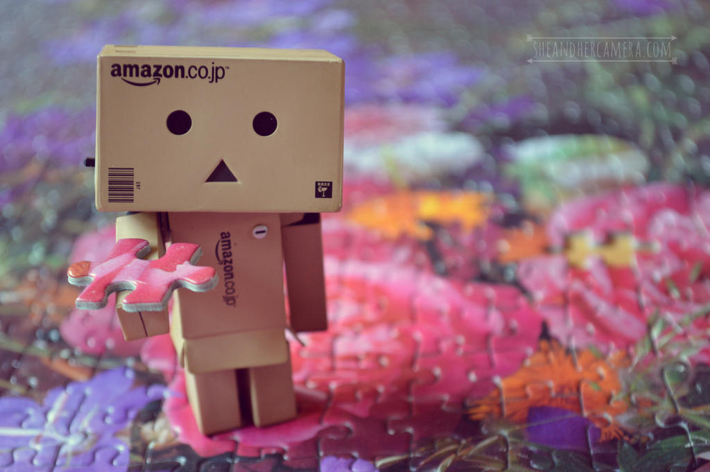 Danbo finding the missing piece by fucute