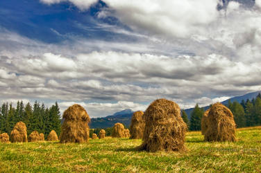Zakopane Haystacks by Sebasket