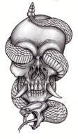 Skull and reptile 2