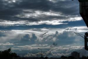 sky's the limit by posiekk