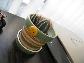 Cactus smilee by mantasito