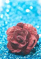 Velvet rose by pqphotography