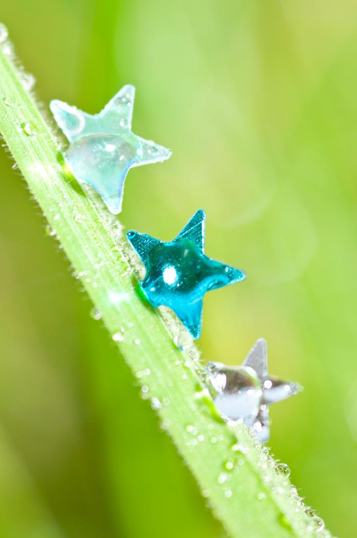 Marina stars by pqphotography