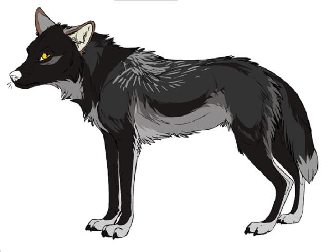 fursona - Kaylink wolf maker by Racnel-24 on DeviantArt