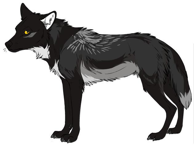Anthro Black Cat