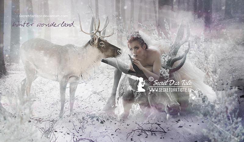 Winter Wonderland by SecretDarTiste