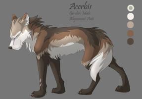 Character Sheet 13 - Acerbis by Kiarei-star