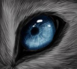 Eye 2 by Kiarei-star