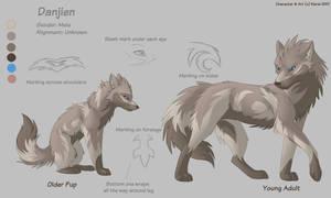 Character Sheet 2 - Danjien by Kiarei-star