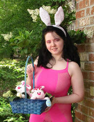 Bunny8463